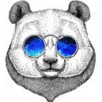 Эскиз тату панды в очках