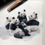Эскиз тату целой семьи панд