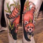 Тату красной панды