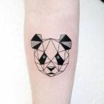 Панда, геометрия