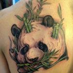 Тату голова панды с бамбуком