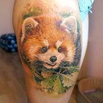 Портрет красной панды, тату