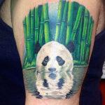 Панда в стиле раелизм