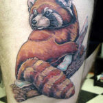 3 д красная панда