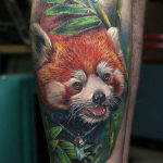 Красная панда в стиле реализм