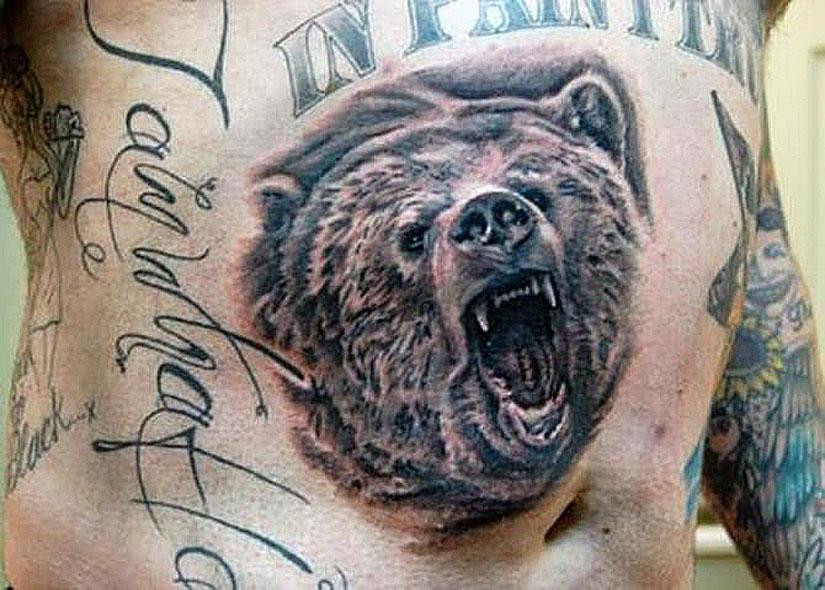 Медведь на мужском животе