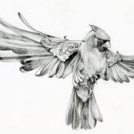 Птица с распахнутыми крыльями