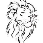 Мужской эскиз льва