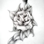 Роза с листьями