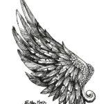 Крутое крыло