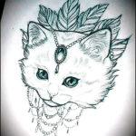 Мордочка милой кошки