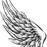 Крыло на локоть, эскиз