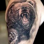 Медведь с открытой пастью