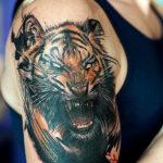 Реалистичный тигр