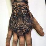 Тигр с яркими глазами