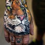 Тигр цветной