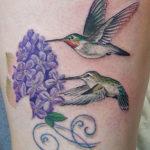 Колибри с цветами сирени