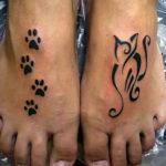 Отпечатки лап и кошка