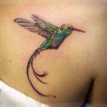 Летящая колибри