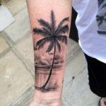 Пальма, реализм
