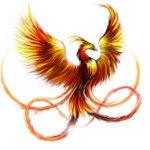 Эскиз тату птица феникс