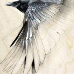 Эскиз тату ворона