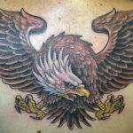 Орел с распахнутыми крыльями