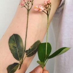 Сравнение тату полевого цветка с растением