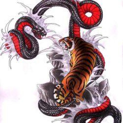 Тигр с драконом