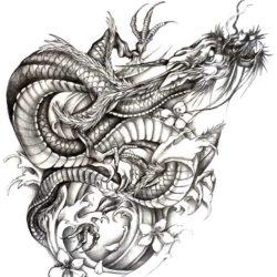 Эскиз татуировки дракона с цветами магнолии