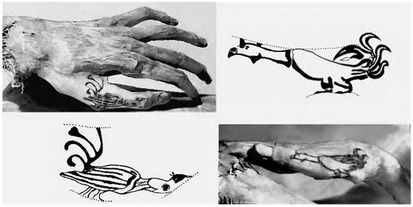 Татуировки у мумии на кистях левой и правой руке мужчины из пазырыкского кургана
