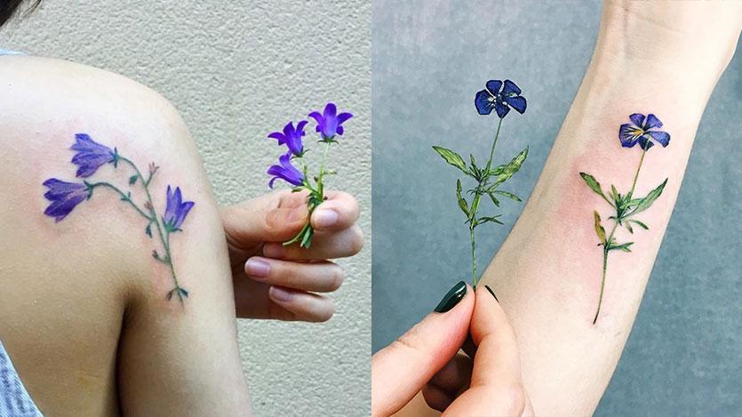 Сравнение полевых цветов и татуировки