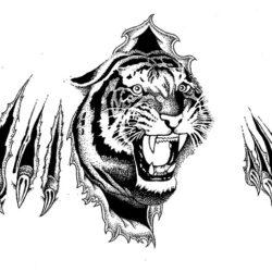 Черно белый эскиз тату тигр