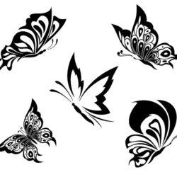 Бабочки пять вариантов