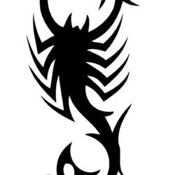 Эскиз тату скорпион
