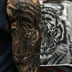 Черно-белая тату тигра у парня на руке